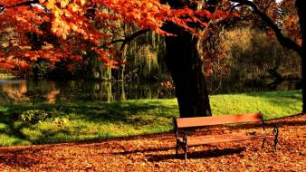 Light landscapes nature bench lawn parks autumn wallpaper