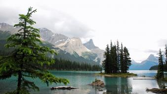 Mountains landscapes nature forests canada maligne lake wallpaper