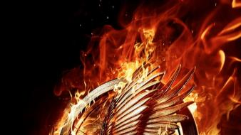 Movies the hunger games catching fire wallpaper