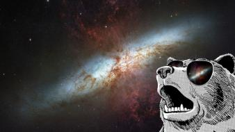 Outer space grizzly bears wallpaper