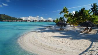 Palm trees resort bora rest azure tropics wallpaper
