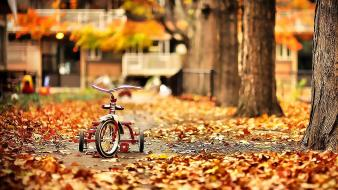 Trees autumn (season) bicycles parks fallen leaves wallpaper