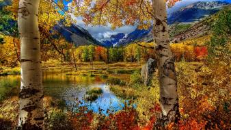 Water mountains forest birch autumn wallpaper