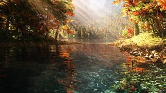 Water nature forest wallpaper