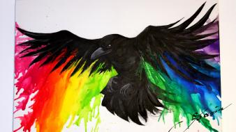 Animals rainbows crows wallpaper