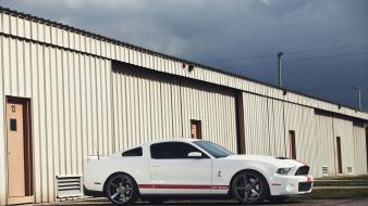 Ford muscle cars mustang white american shelby wallpaper