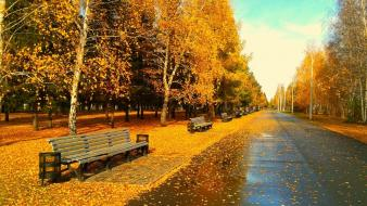 Nature streets autumn wallpaper