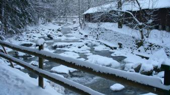 Nature winter snow trees rivers wallpaper
