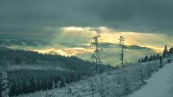 Nature winter sunlight snow landscapes skies wallpaper