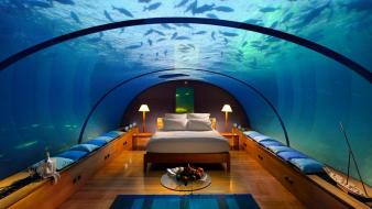 Room beds aquarium wallpaper