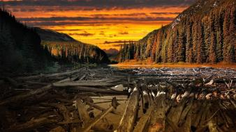 Sunset landscapes wood earth rivers wallpaper