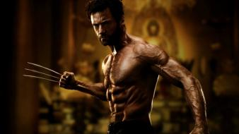 X-men wolverine men hugh jackman Wallpaper