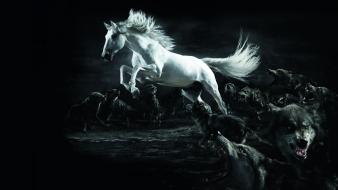Dark horses digital art artwork white horse wolves wallpaper