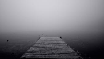 Black and white ice fog ponds lakes wallpaper