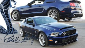 Cars sports car shelby gt500 supersnake Wallpaper