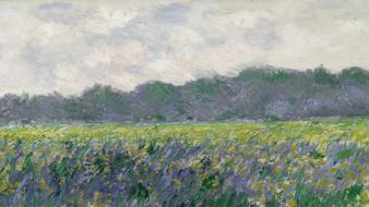 Paintings fields giverny claude monet irises impressionism wallpaper