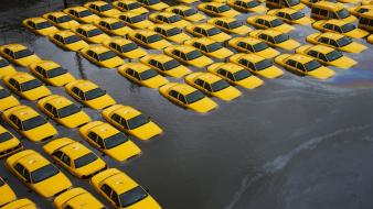 Taxi flood new jersey yellow hurricane sandy wallpaper