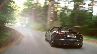 The road on jaguar f type wallpaper