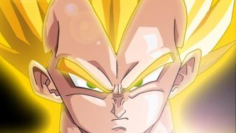 Vegeta dragon ball z super saiyan Wallpaper