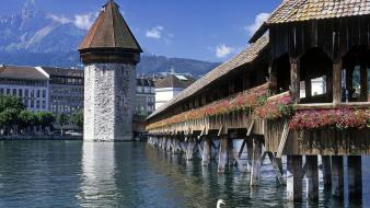 World architecture swans switzerland rivers Wallpaper