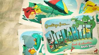 Angry birds piglantis wallpaper