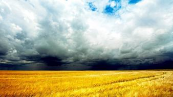 Clouds storm fields wheat wallpaper