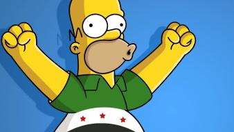 Homer simpson the simpsons syria free Wallpaper