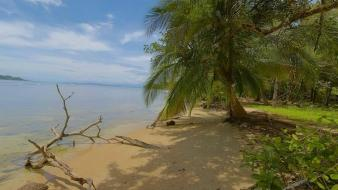 Landscapes nature beach tropical panama wallpaper