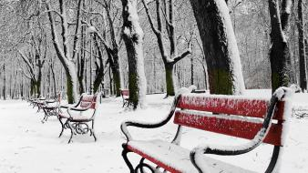 Landscapes nature winter snow trees bench wallpaper