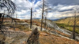 Minerals yellowstone national park mammoth hot springs wallpaper