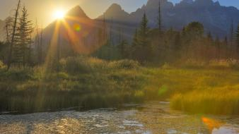 Nature ponds wyoming grand teton national park wallpaper