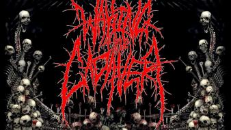 Skulls music bands deathcore waking the cadaver Wallpaper