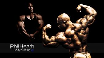 Bodybuilding wallpaper