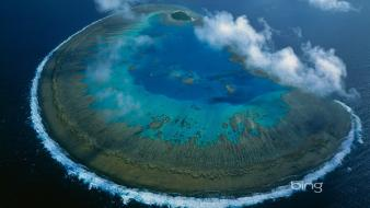 Great barrier reef bing lady musgrave island wallpaper