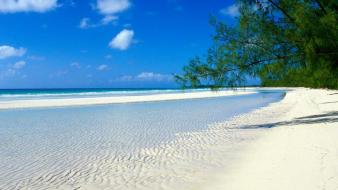 Landscapes nature sand trees white bahamas beach wallpaper