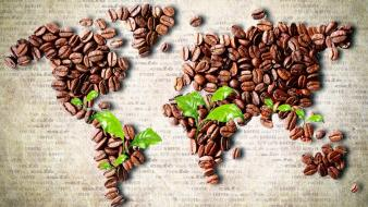 Leaves continents coffee beans world map Wallpaper