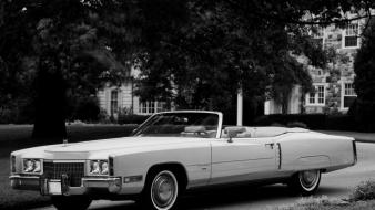 Monochrome cadillac convertible soft top classic cars wallpaper