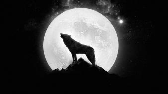 Moon wolves wallpaper