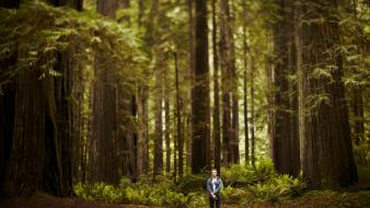 Nature trees forest men people usa california Wallpaper