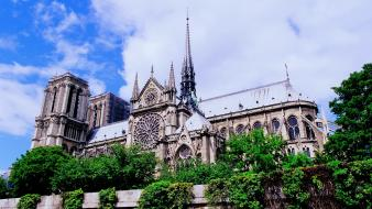 Trees architecture buildings cathedral wallpaper