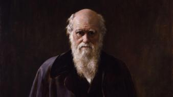 Artwork charles darwin wallpaper