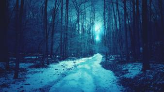 Blue landscapes nature snow sun trees forests roads wallpaper