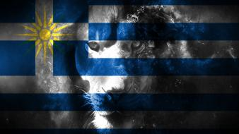 Blue white flags greece lions macedonia greek coulor wallpaper