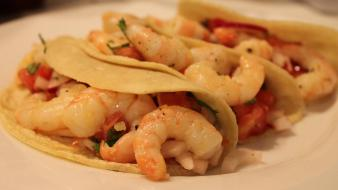 Food tacos shrimps wallpaper