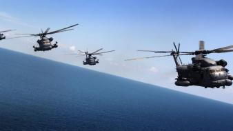 Military helicopters sikorsky navy wallpaper