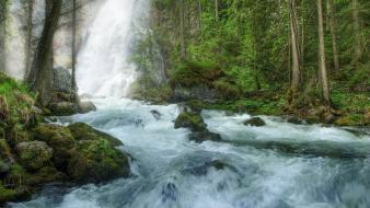 Nature forest waterfalls rivers wallpaper