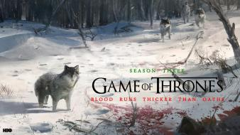 Snow game of thrones tv series hbo wolves wallpaper