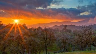 Sunset california spring wallpaper