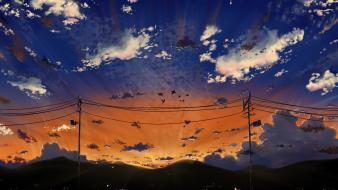 Sunset clouds birds scenic power lines sky wallpaper