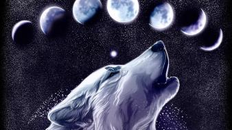 Animals moon artwork wolves wallpaper